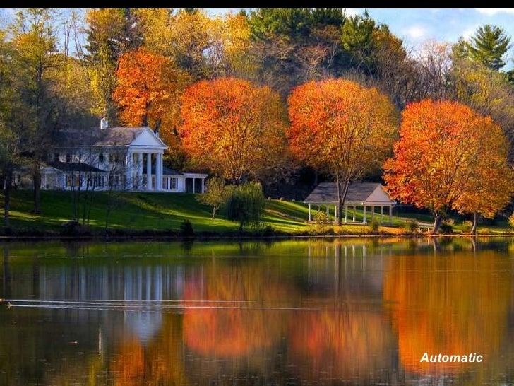 Colours of Autumn.