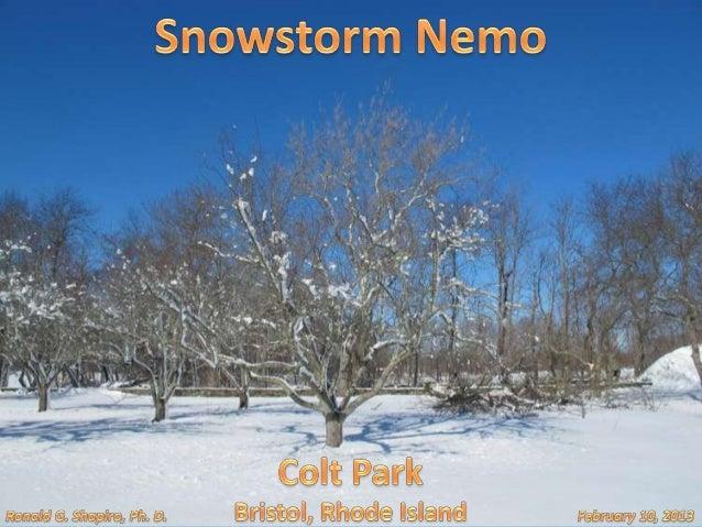 Colt State Park, Bristol Rhode Island after Nemo Snowstorm on February 10, 2013