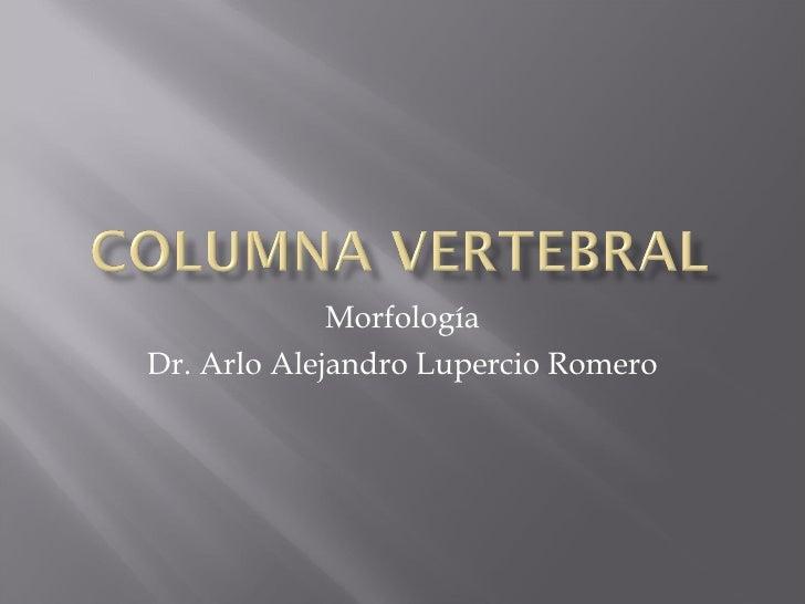 Morfología Dr. Arlo Alejandro Lupercio Romero