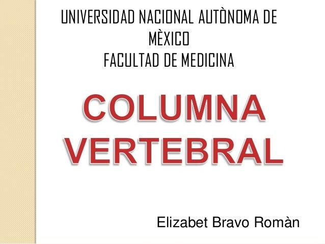 UNIVERSIDAD NACIONAL AUTÒNOMA DE MÈXICO FACULTAD DE MEDICINA Elizabet Bravo Romàn