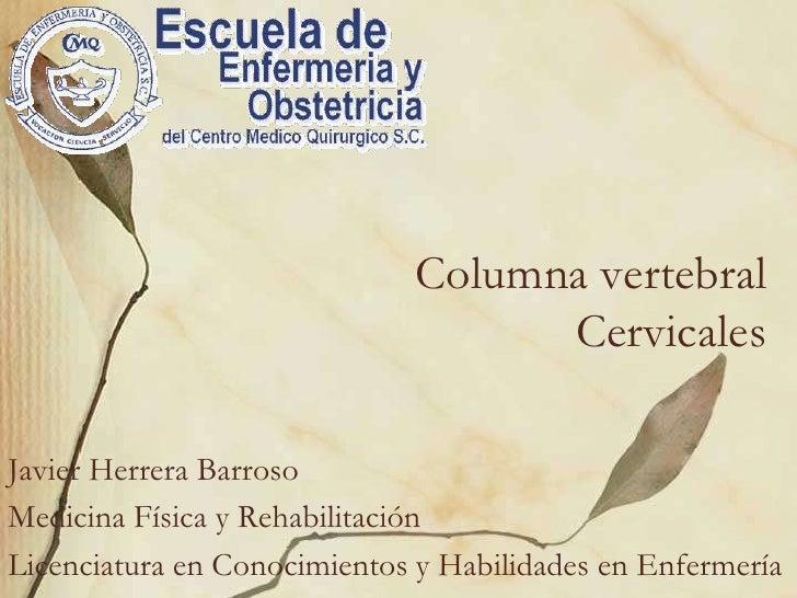 Columna vertebralCervicales<br />Javier Herrera Barroso<br />Medicina Física y Rehabilitación<br />Licenciatura en Conocim...