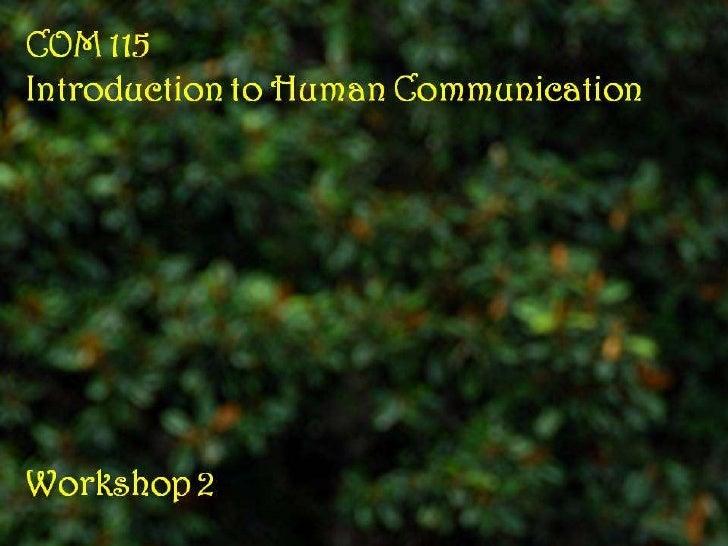COM 115 Workshop 2 Slides