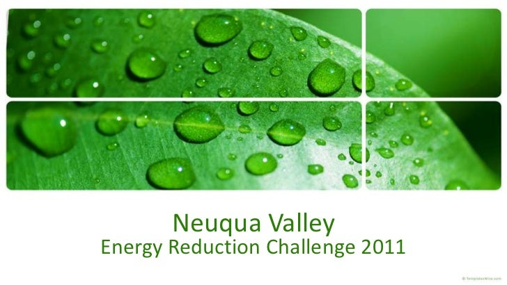 Neuqua ValleyEnergy Reduction Challenge 2011