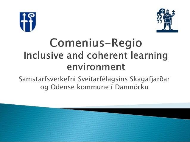 Comenius regio inclusive and coherent learning environment