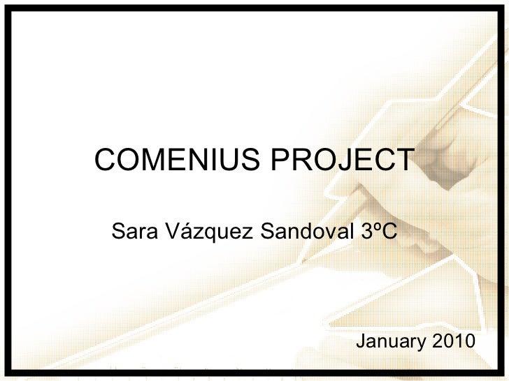 COMENIUS PROJECT Sara Vázquez Sandoval 3ºC January 2010