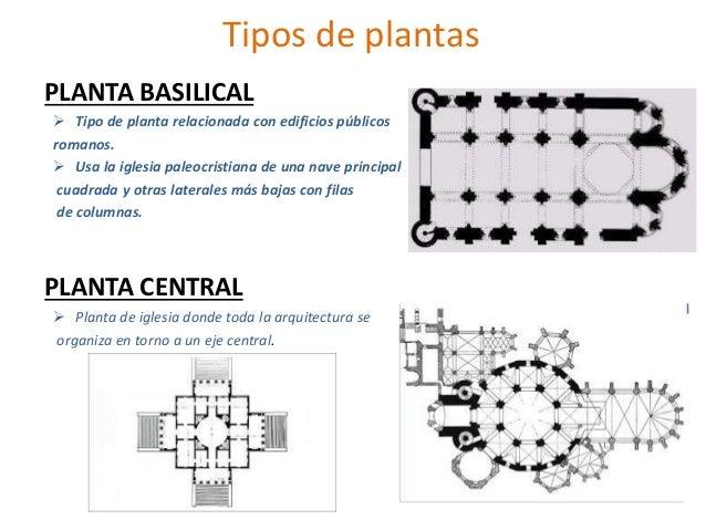 tipos de plantas planta basilical tipo de planta relacionada con