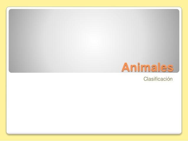 Animales Clasificación