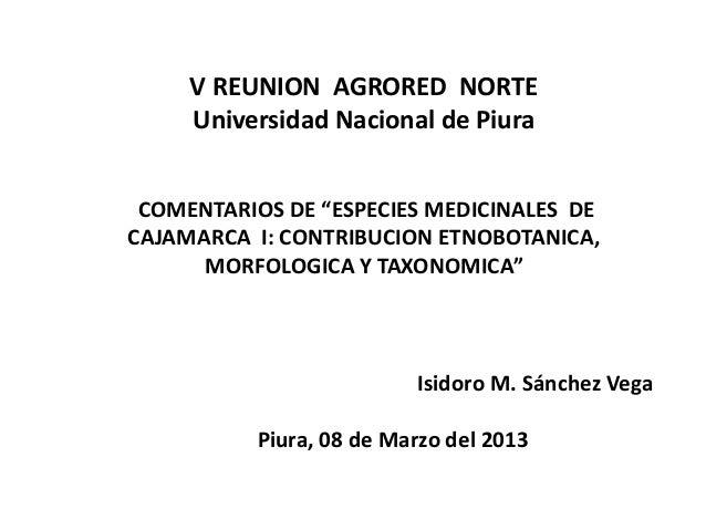 """V REUNION AGRORED NORTE     Universidad Nacional de Piura COMENTARIOS DE """"ESPECIES MEDICINALES DECAJAMARCA I: CONTRIBUCION..."""