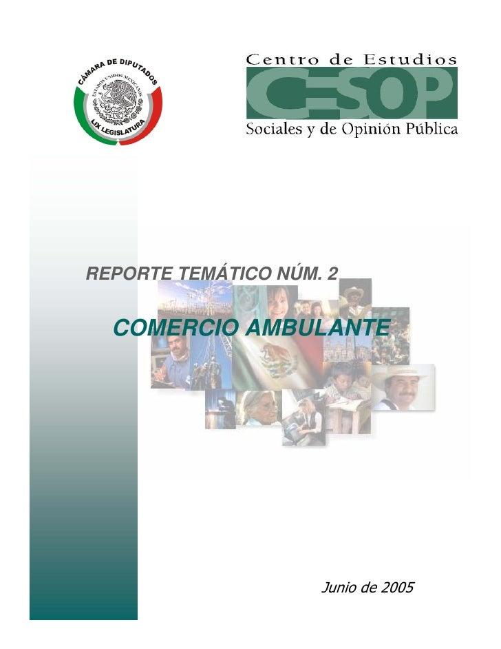 REPORTE TEMÁTICO NÚM. 2  COMERCIO AMBULANTE                     Junio de 2005