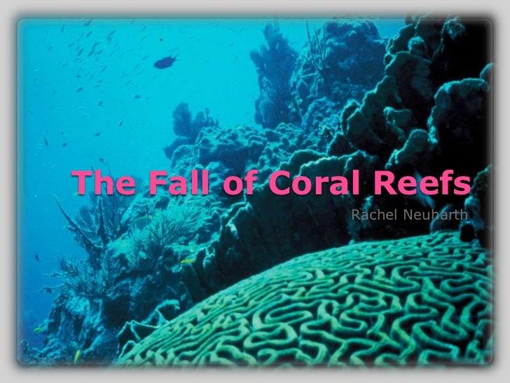The Fall of Coral Reefs                Rachel Neuharth