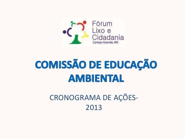 CRONOGRAMA DE AÇÕES-2013