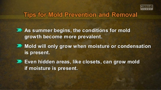 As summer begins, the conditions for moldAs summer begins, the conditions for moldgrowth become more prevalent.growth beco...