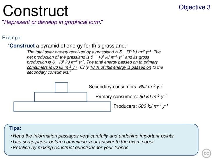 construct biology essay