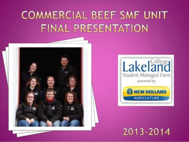 Starting Cattle Numbers from December 31st 2013 70 Cows 49 Heifer calves 3 Bulls 11 Bred Heifers
