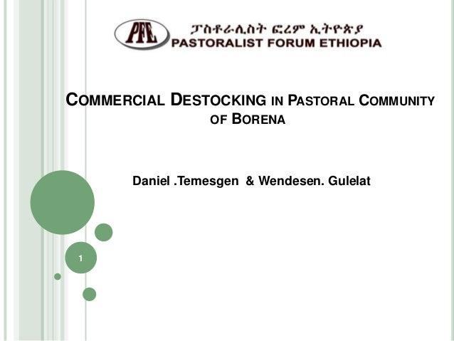 Commercial destocking pastoralist areas of Borena