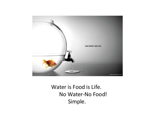 Water is Food is Life. No Water-No Food! Simple.