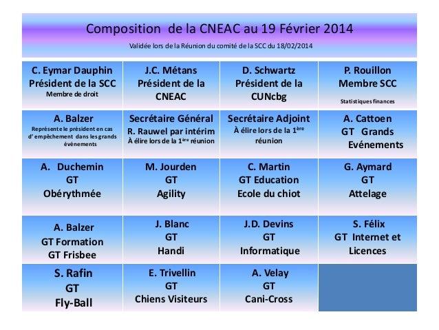 Composition de la CNEAC au 19 Février 2014 Validée lors de la Réunion du comité de la SCC du 18/02/2014  C. Eymar Dauphin ...