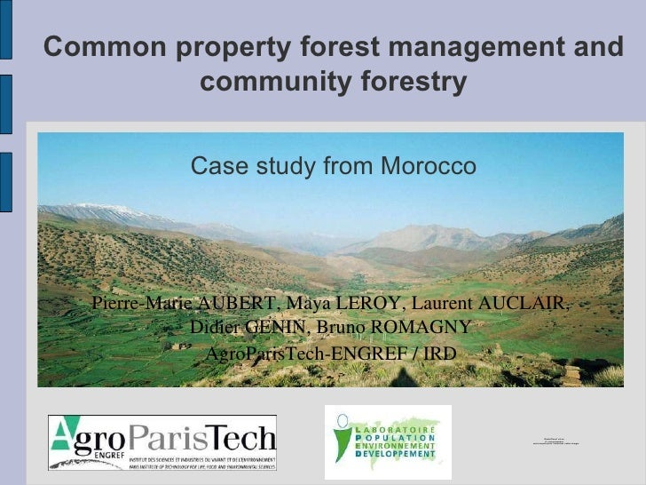Common property forest management and community forestry Pierre-Marie AUBERT, Maya LEROY, Laurent AUCLAIR, Didier GENIN, B...