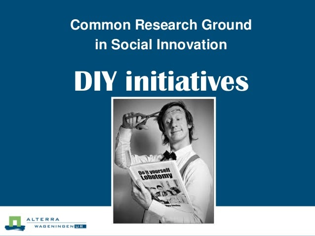 Common Research Ground in Social Innovation  DIY initiatives