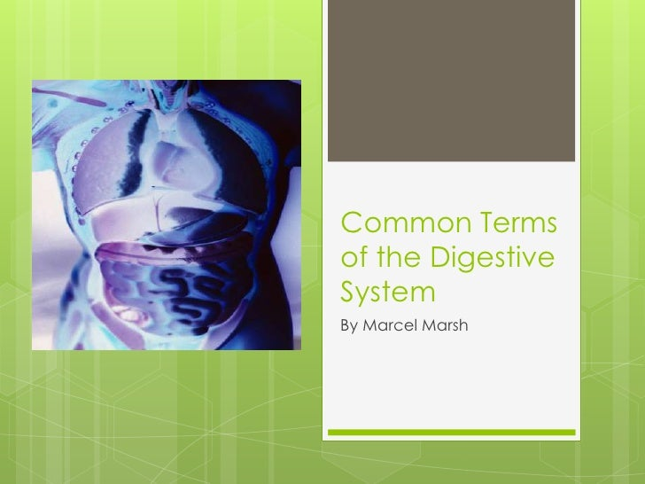 Common Termsof the DigestiveSystemBy Marcel Marsh