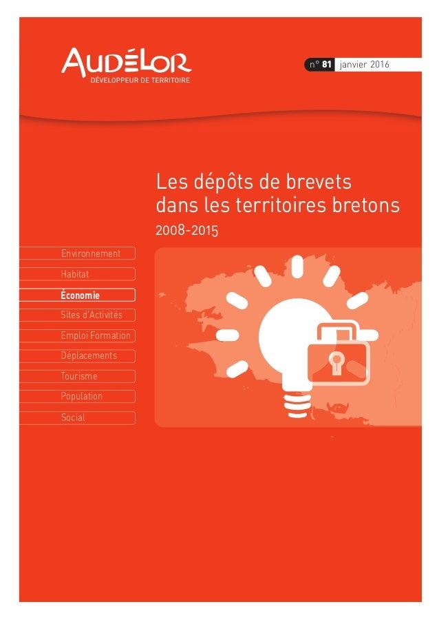 Environnement Économie Habitat Sites d'Activités Emploi Formation Déplacements Tourisme Population Social n° 81 janvier 20...
