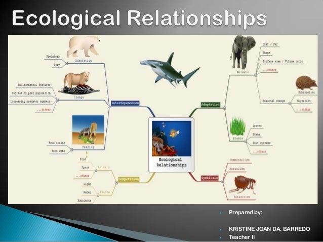 Symbiotic Relationships Worksheet Middle School - Worksheets