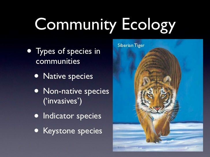 Community Ecology                         Siberian Tiger• Types of species in  communities  • Native species  • Non-native...