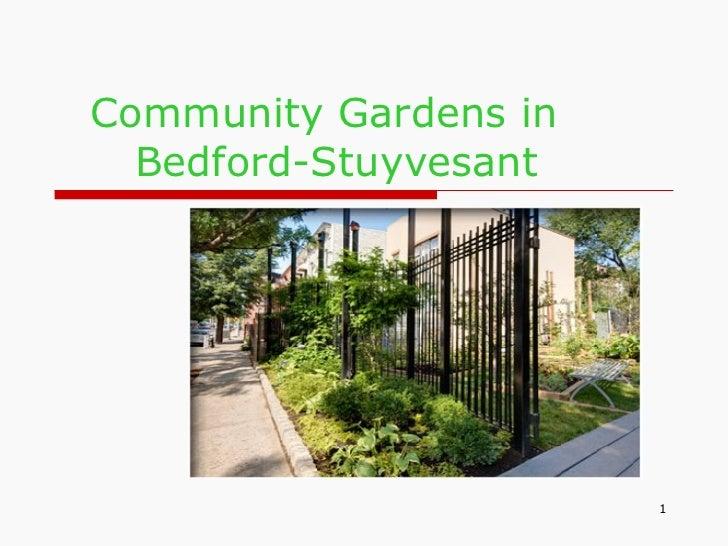 Community Gardens in  Bedford-Stuyvesant