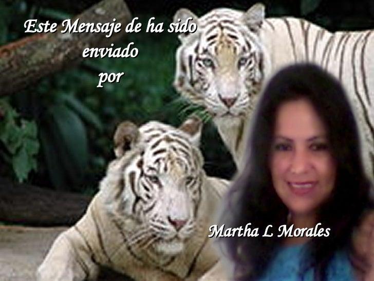 Este Mensaje de ha sido enviado por Martha L Morales
