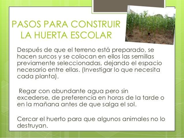Como construir una huerta escolar for Como evitar que salga hierba en el jardin