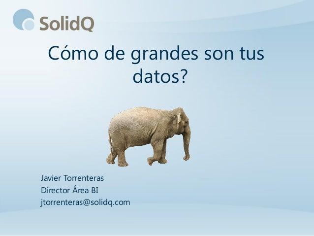 Cómo de grandes son tus         datos?Javier TorrenterasDirector Área BIjtorrenteras@solidq.com