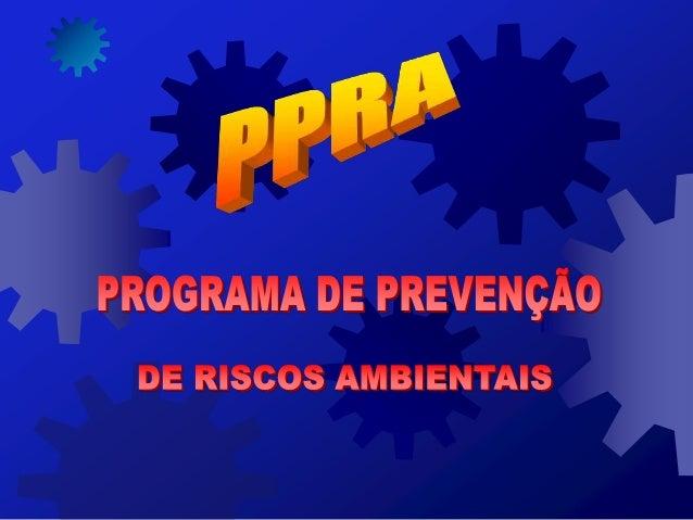 - PADRÃO PARA ELABORAÇÃO DO PROGRAMA DE PREVENÇÃO DE RISCOS AMBIENTAIS - DOCUMENTO DESENVOLVIDO PARA SER UTILIZADO COMO BA...