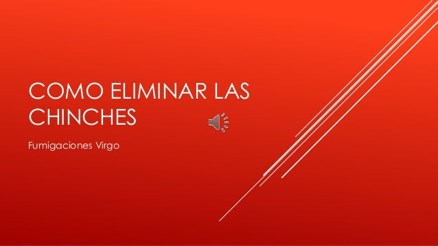eliminar chinches:
