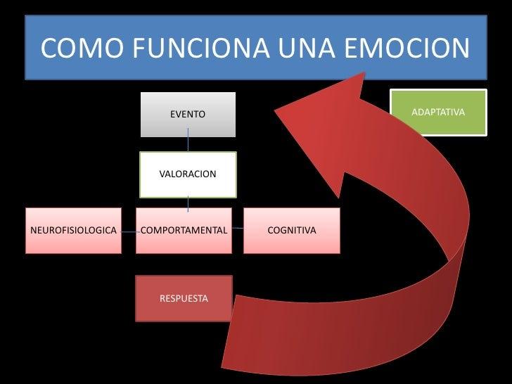 Como funciona una emocion for Como funciona una depuradora