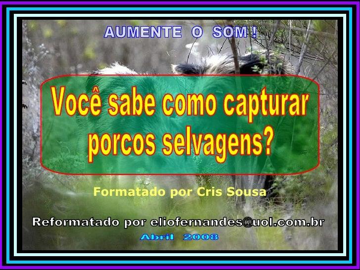 AUMENTE  O  SOM ! Reformatado por eliofernandes@uol.com.br Abril  2008 Formatado por Cris Sousa Você sabe como capturar  p...