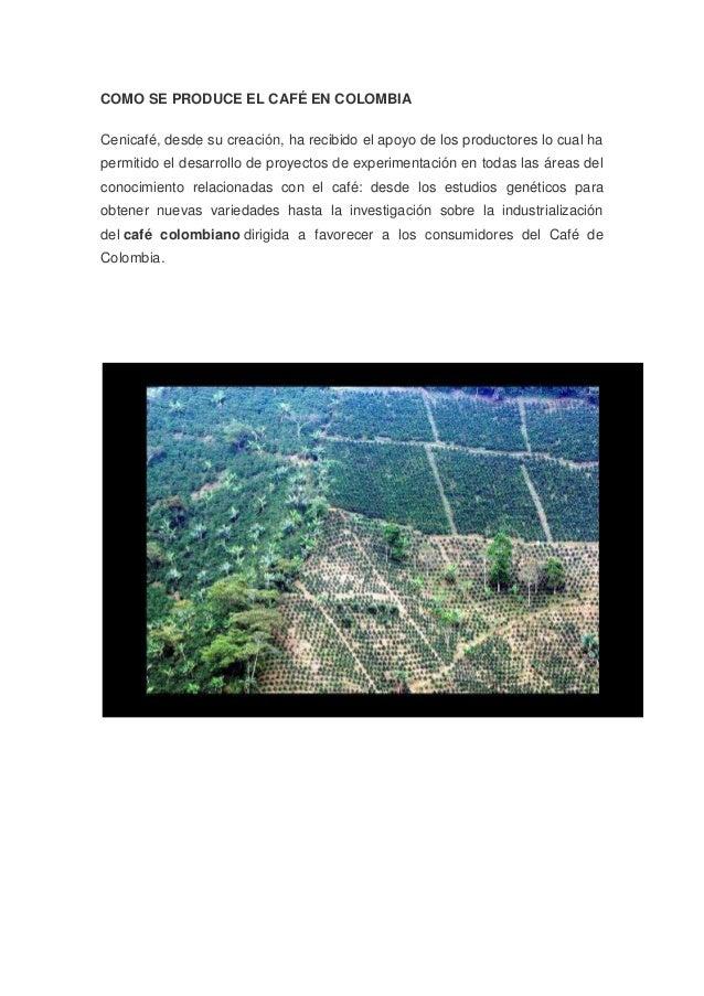 COMO SE PRODUCE EL CAFÉ EN COLOMBIA Cenicafé, desde su creación, ha recibido el apoyo de los productores lo cual ha permit...