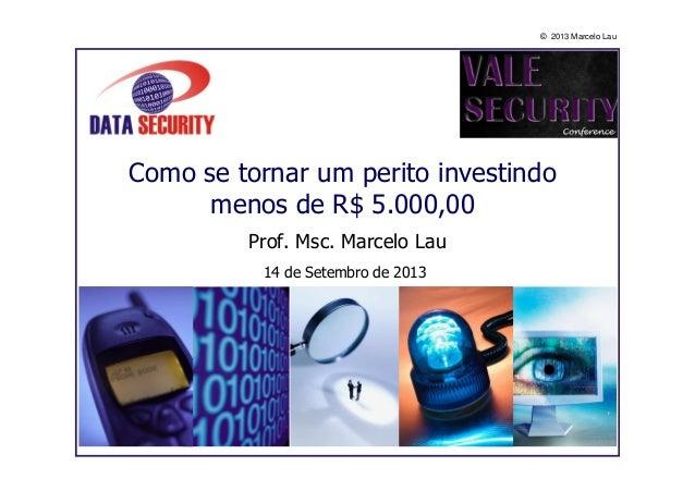 © 2013 Marcelo Lau Como se tornar um perito investindo menos de R$ 5.000,00 Prof. Msc. Marcelo Lau 14 de Setembro de 2013