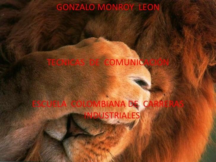GONZALO MONROY LEON  TECNICAS DE COMUNICACIÓNESCUELA COLOMBIANA DE CARRERAS          INDUSTRIALES
