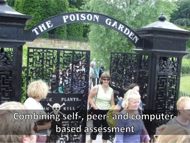 Combining self-, peer- and computer-based assessment