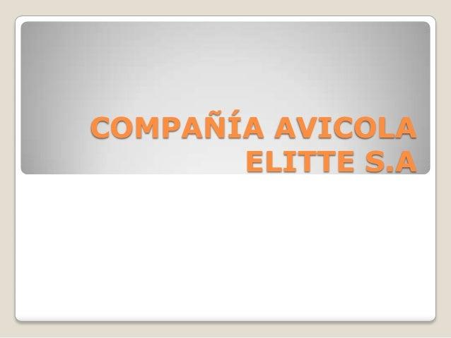 COMPAÑÍA AVICOLA       ELITTE S.A