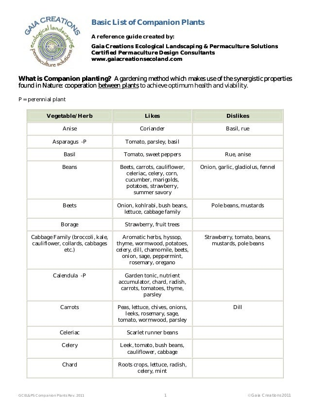Basic List of Companion Plants - Chico, California