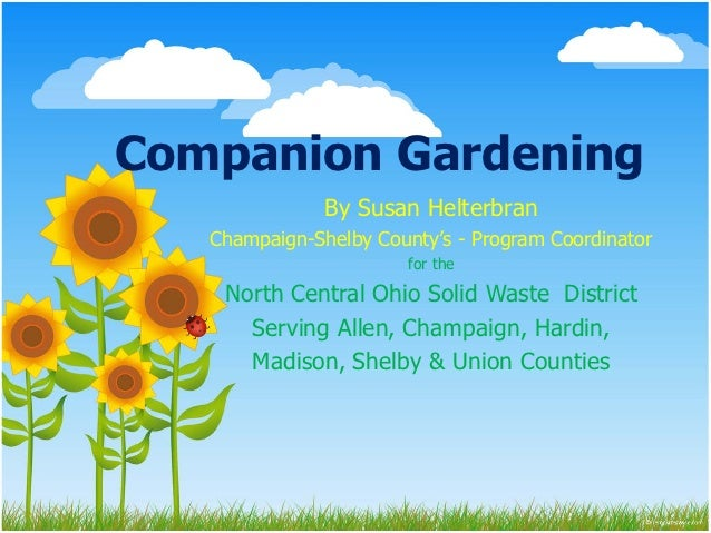 Companion Gardening               By Susan Helterbran   Champaign-Shelby County's - Program Coordinator                   ...
