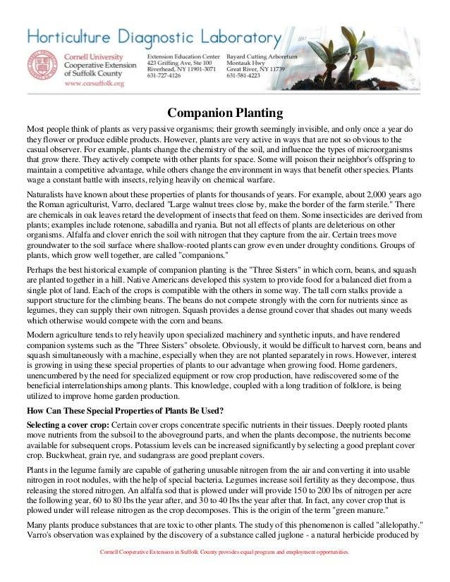 Companion Planting - Cornell Cooperative Extension of Suffolk