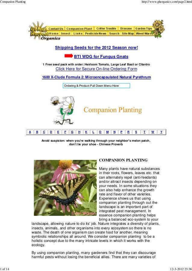 Companion Planting                                                                                  http://www.ghorganics....