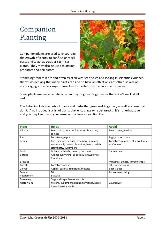 Companion PlantingCompanionPlantingCompanion plants are used to encouragethe growth of plants, to confuse or repelpests an...