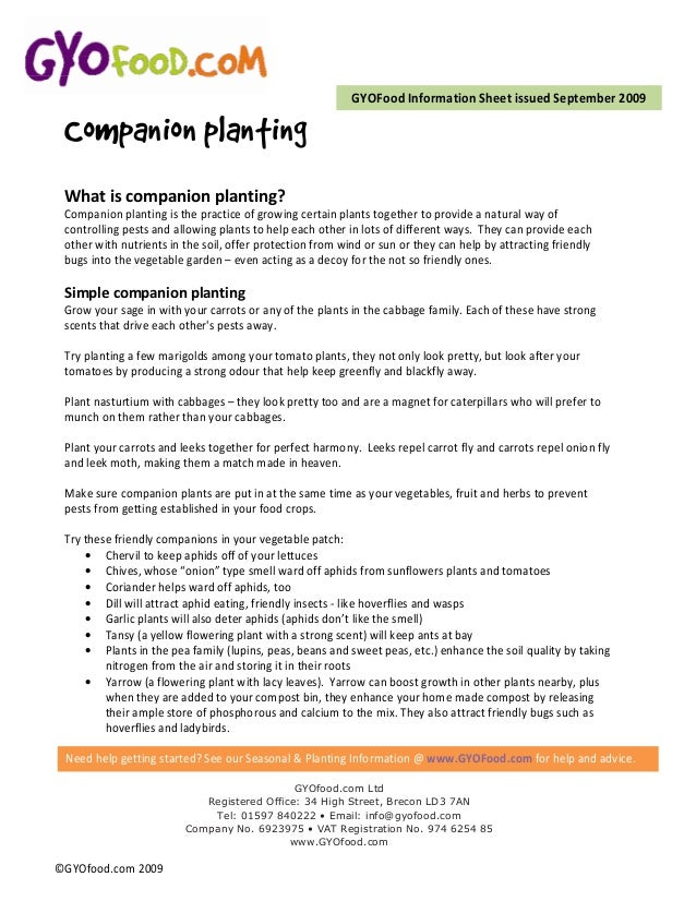 GYOFood Information Sheet issued September 2009 Companion planting What is companion planting? Companion planting is the p...