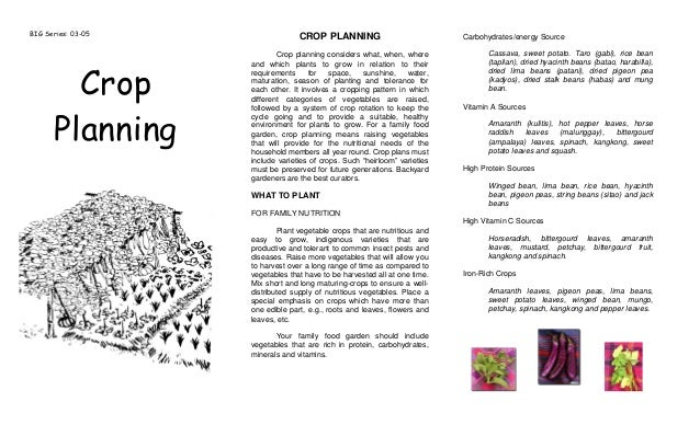 Companion Planting and Crop Planning - Agricultural Training Institute, Philippines