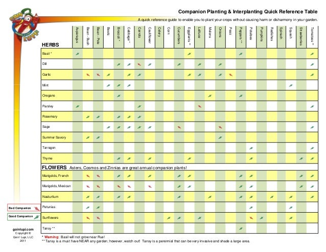 Companion Planting and Interplanting Quick Reference Table