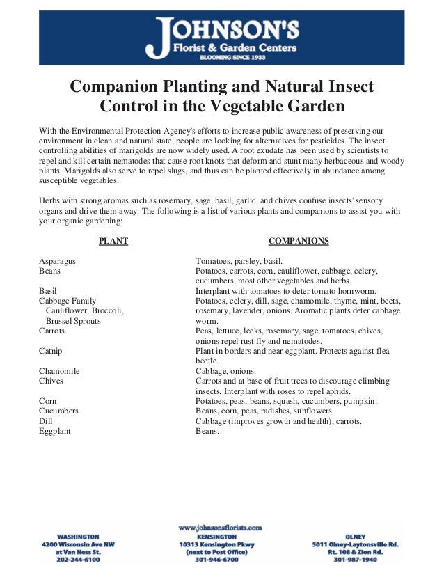 Companion Planting and Natural Insect            Control in the Vegetable GardenWith the Environmental Protection Agencys ...