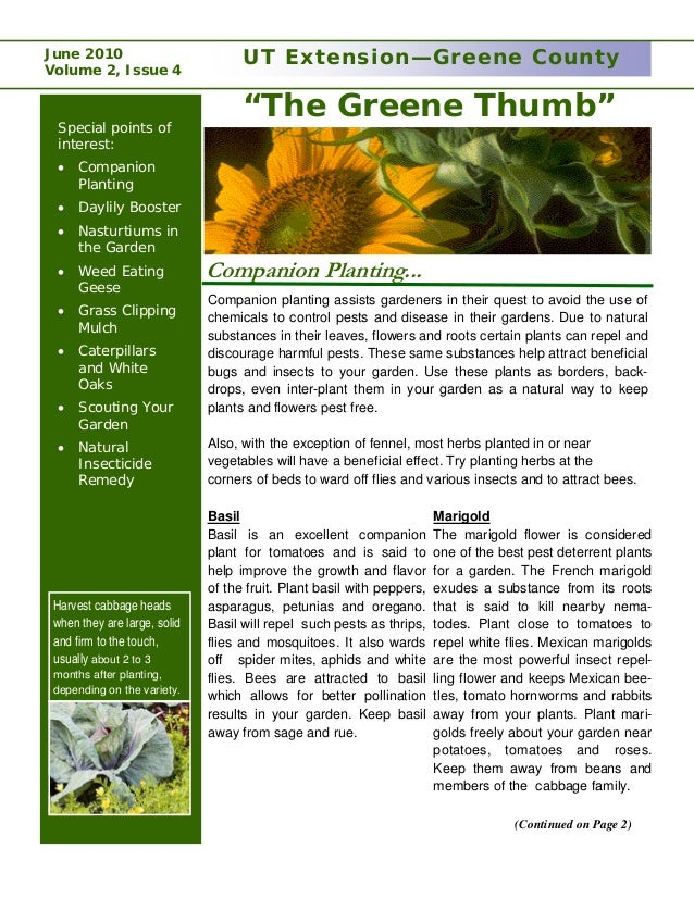 Companion Planting and the Green Thumb - University of Tennessee